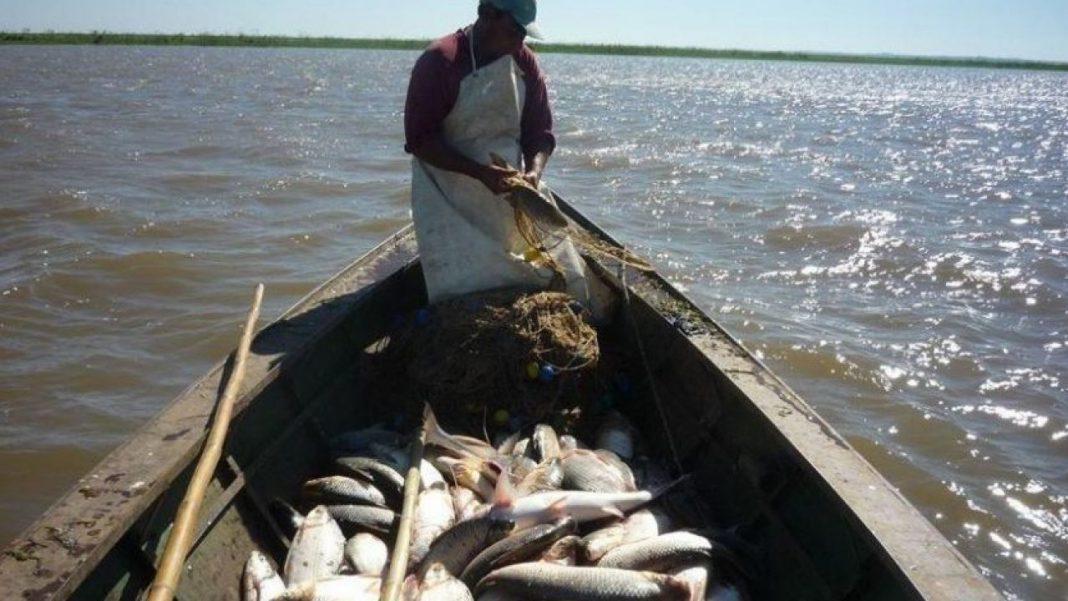 pesca-artesanal-un-avance-con-forma-de-carnet